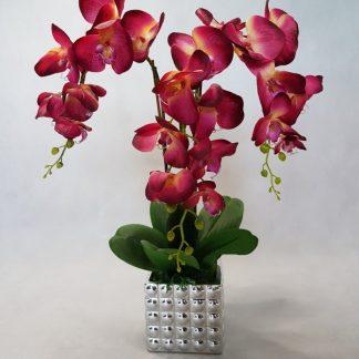 fioletowy storczyk - wzór 33 - zdj 1